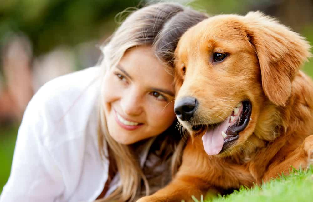 Kako smiriti psa kad se boji